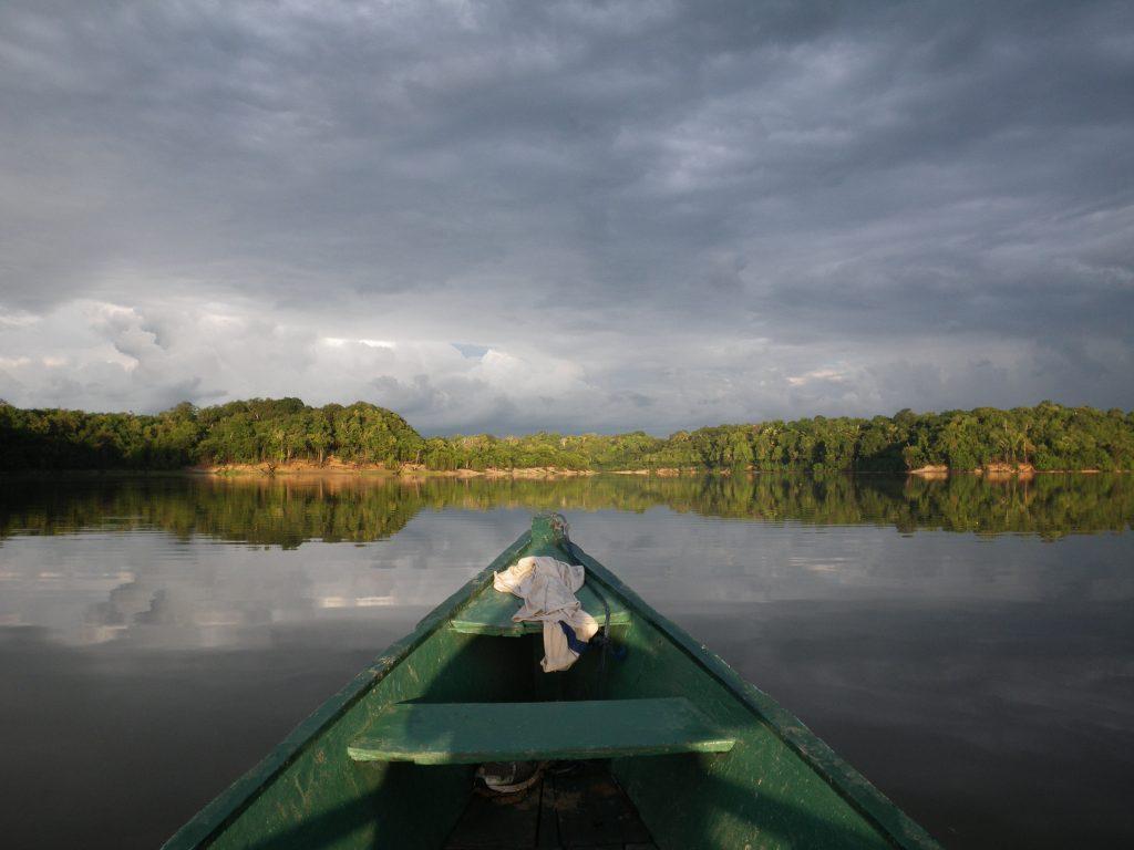 Amazonas 08