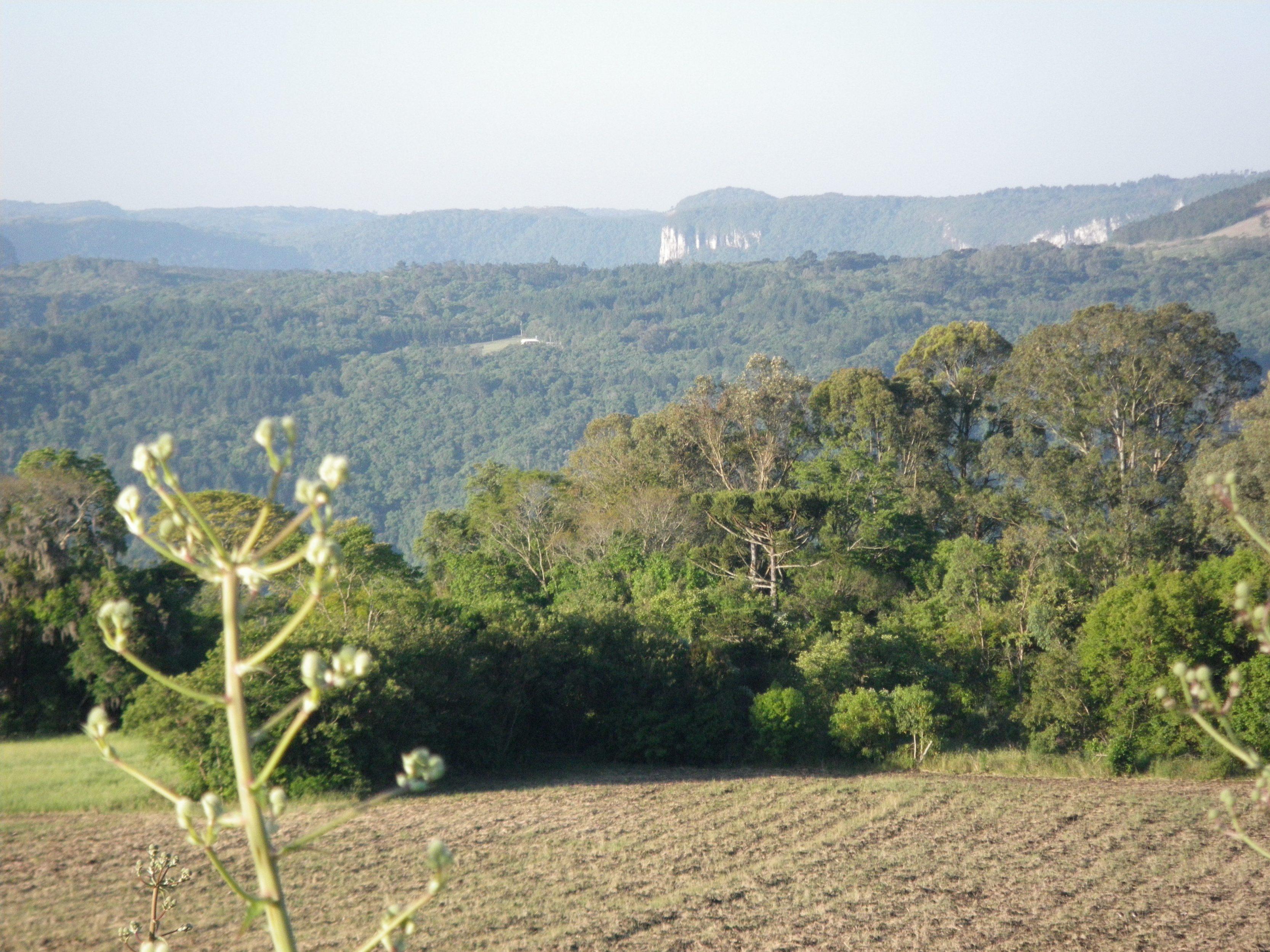 Rio Grande do Sul 07
