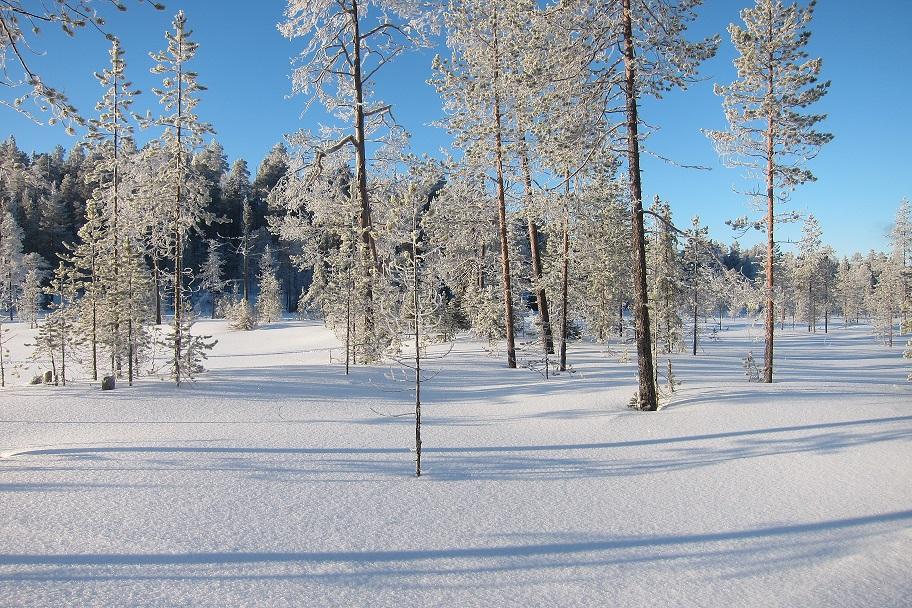 Finnland Winter 05