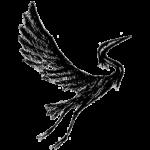Sinnan Logo