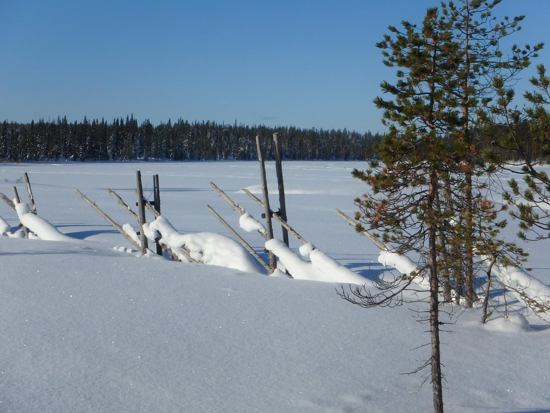 Finnland - Salla 01