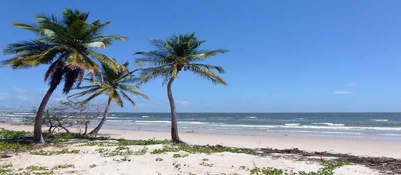 Amazonas Strand